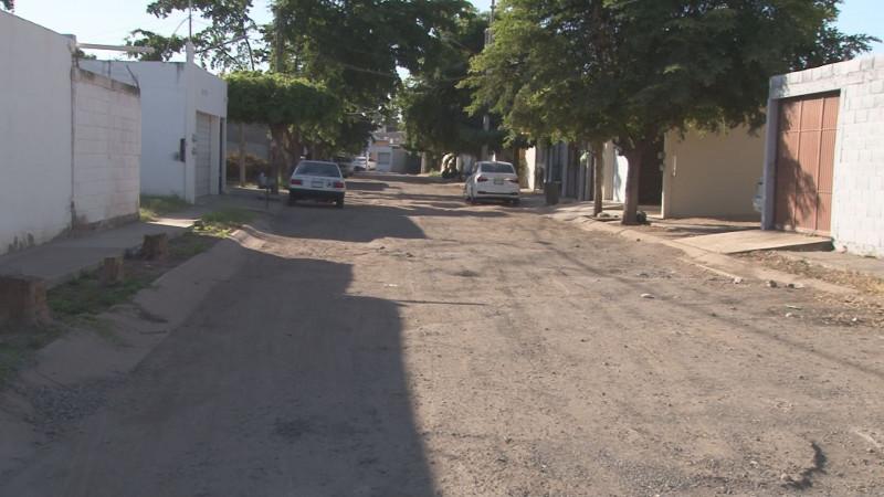 En mal estado las calles en Riveras de Tamazula