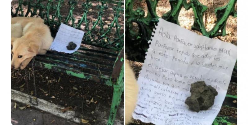 """""""Por favor adóptalo"""": niño deja nota junto a su perro porque sus familiares lo maltrataban"""