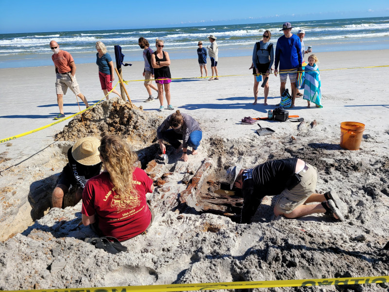 Erosión causada por la tormenta Eta descubre navío del siglo XIX en Florida