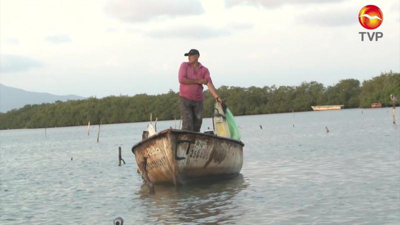 Van por la regularización de la pesca nacional