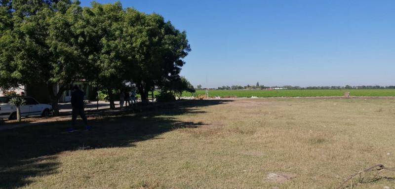 Terrenos de Bosque de Pedregal no era área verde