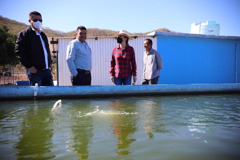 Trabajan  en la estructuración de los proyectos de pesca