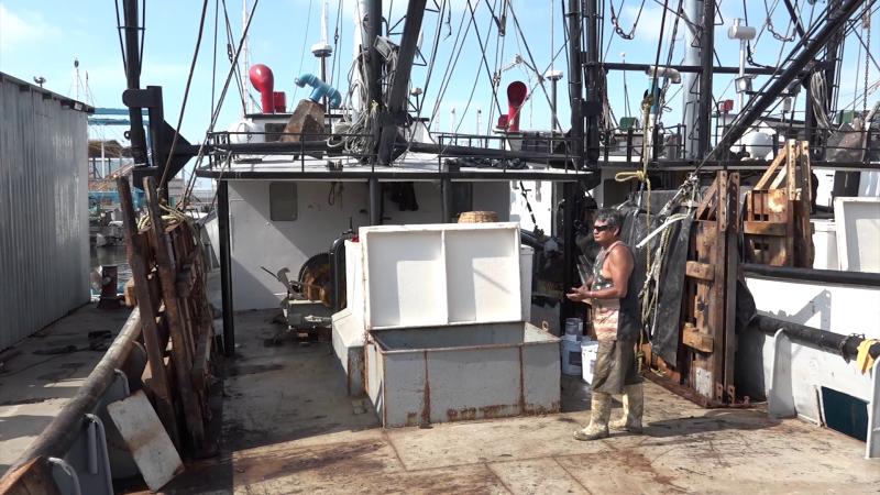 80 por ciento de pescadores del mar están desempleados