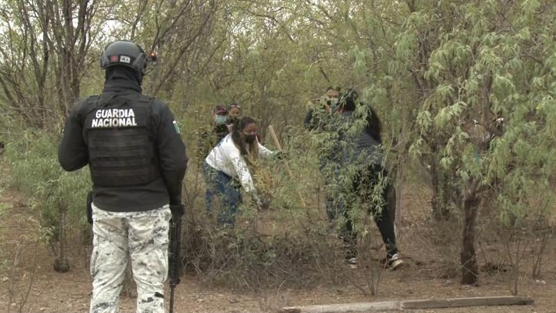 Realizan búsqueda masiva colectivos de desaparecidos