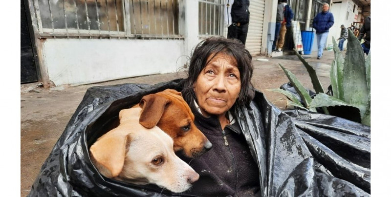 Soledad se resguardaba del frío con sus seis perros callejeros en una bolsa negra