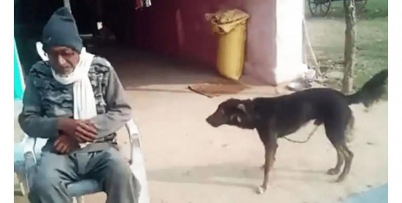 Este abuelo le heredará la mitad de su casa a su perro en vez de a sus hijos