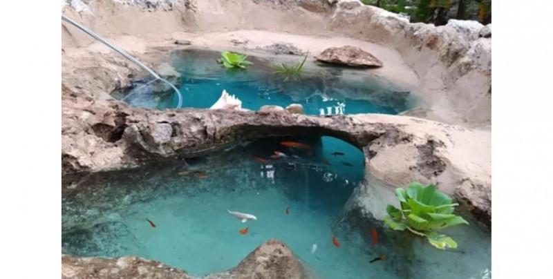 Mira el mini cenote que esta familia yucateca creó en el patio de su casa