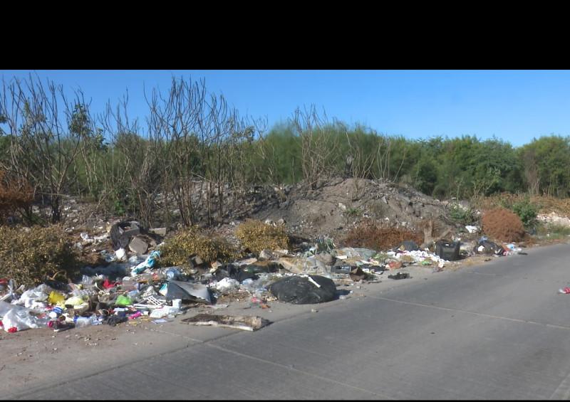 Denuncia vecinos de la Huertas Dos en Los Mochis basuron clandestino