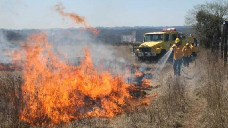 CONAFOR espera una temporada crítica en incendios forestales