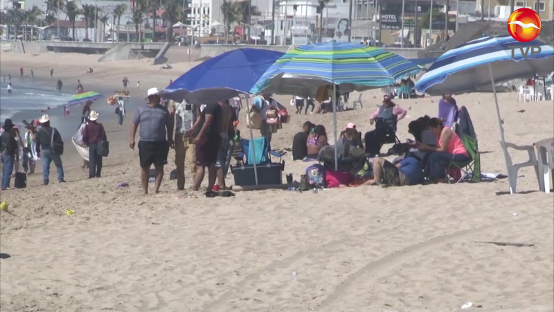 Revisarán hasta las hieleras en Semana Santa en Mazatlán