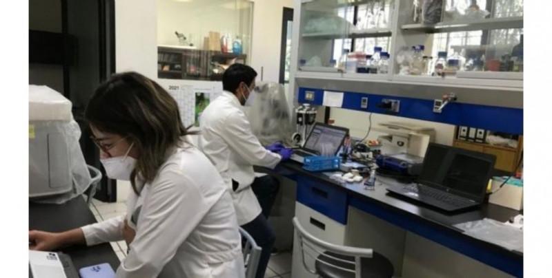 Estas son las tres vacunas para Covid-19 en las que universidades mexicanas trabajan actualmente
