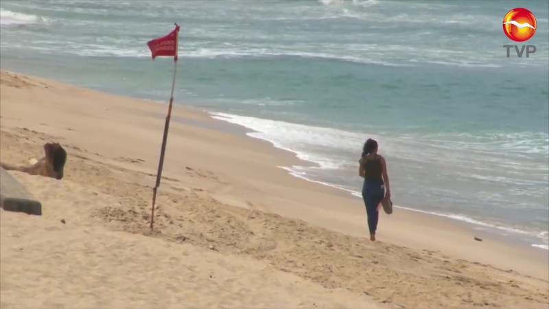 Robos llegan hasta la playa en Mazatlán, se llevan los banderines