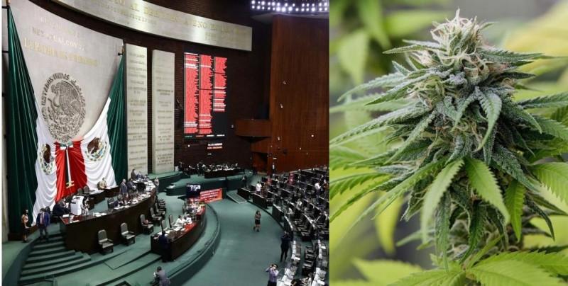 La Cámara de Diputados aprueba ley para el consumo lúdico de la marihuana