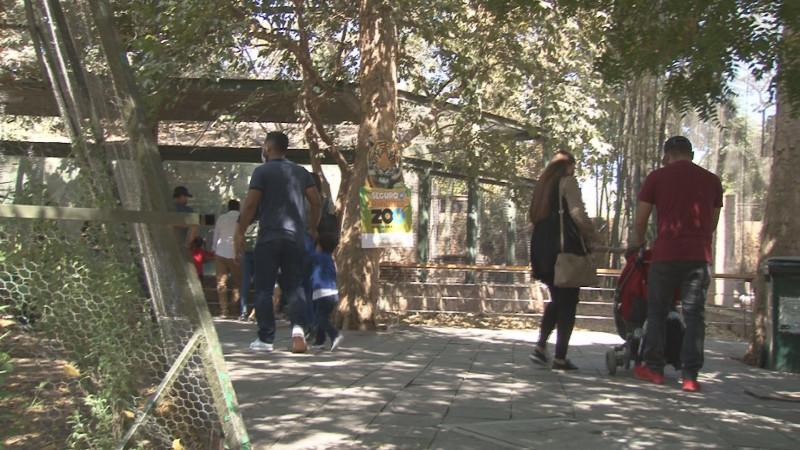 Día de asueto las familias salen al zoológico de Culiacán