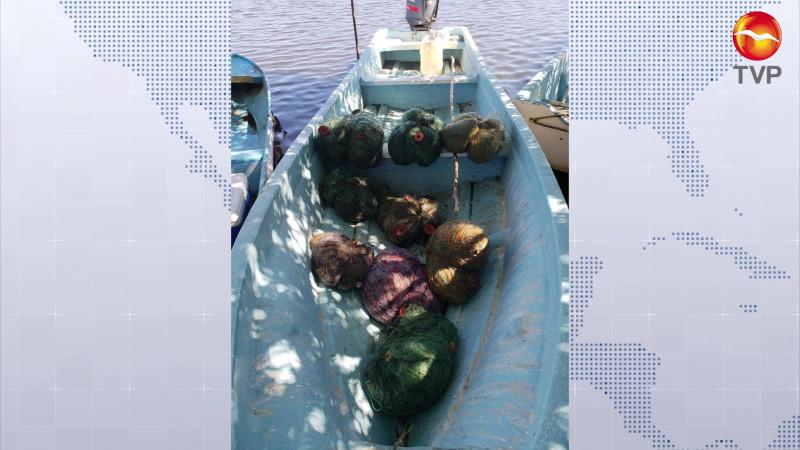 Asegura la CONAPESCA 109 toneladas de producto pesquero