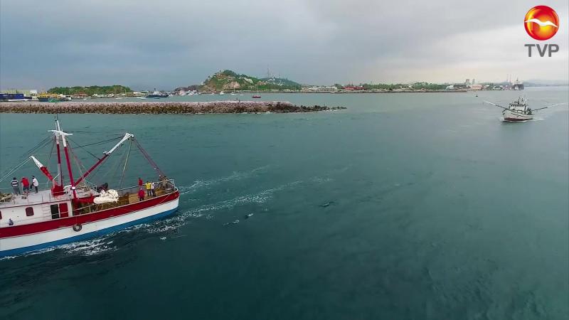 Enfrenta pesca trámites engorrosos para exportar a EU