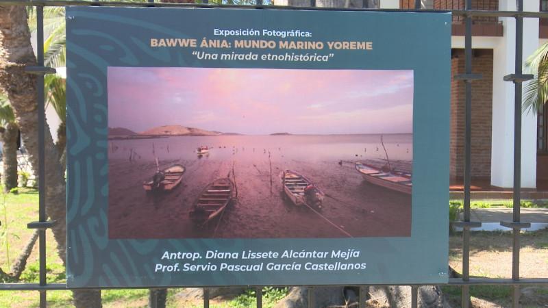 "Inauguran la exposición fotográfica ""Bawweánia: Mundo Marino Yoreme"""