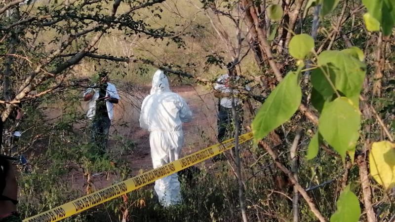 Encuentran osamenta en el Limón de Los Ramos al norte de Culiacán