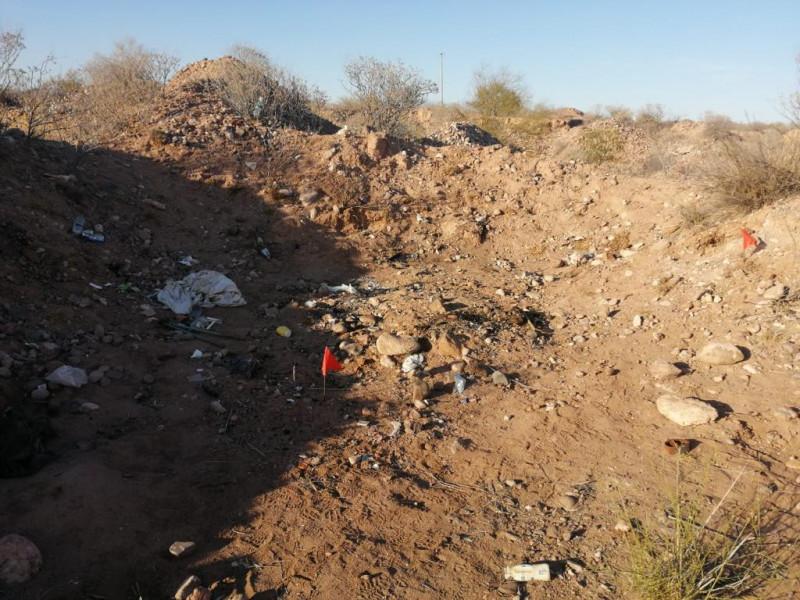 Restos óseos encontrados en San José de Guaymas serán analizados por el Laboratorio de Inteligencia Científica Forense