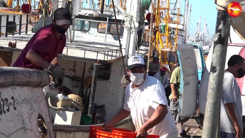 Pactan estrategia para evitar veto al camarón mexicano en EU