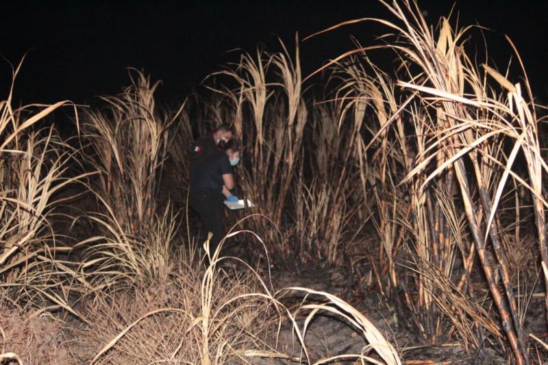 Localizan cuerpo calcinado en sembradío de caña en Costa Rica