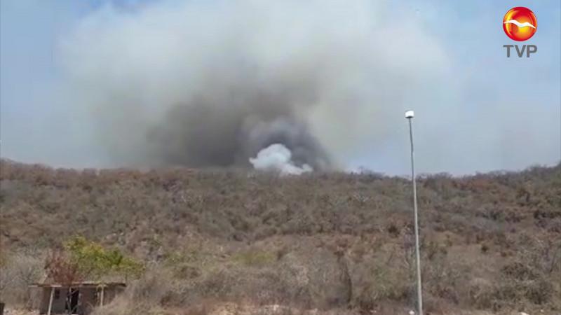 Con fuerza pública pretenden acabar con los incendios en el Basurón