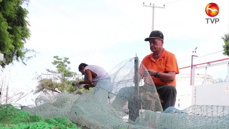 Actualizan lineamientos de excluidores de tortugas marinas