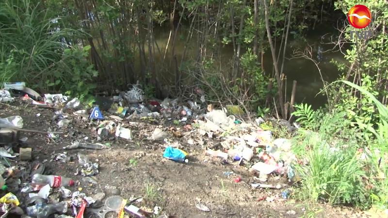 Contaminación e invasiones las fallas de Mazatlán a la naturaleza