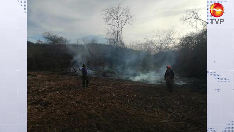 Consume incendio 40 hectáreas en Concordia