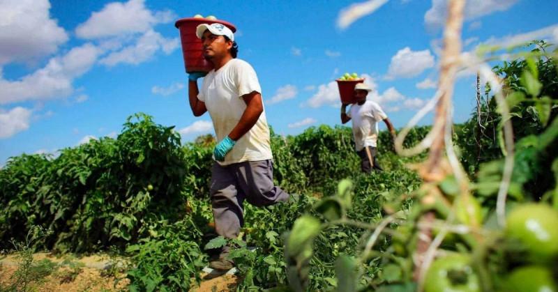 La actividad económica de México cae un 5.1 % interanual en febrero