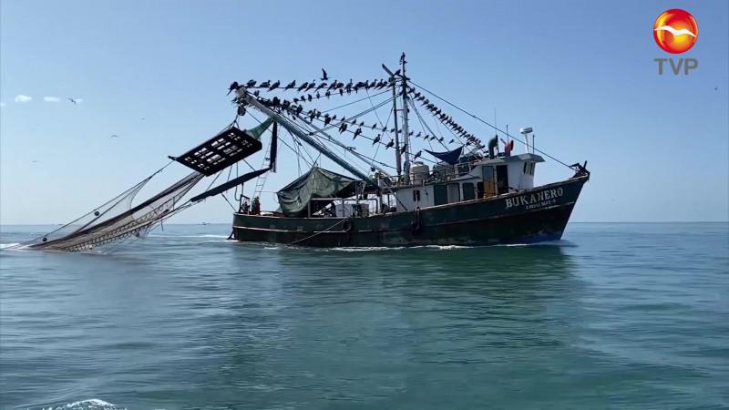 Trabajará CANAINPESCA junto a autoridades para recuperar exportaciones