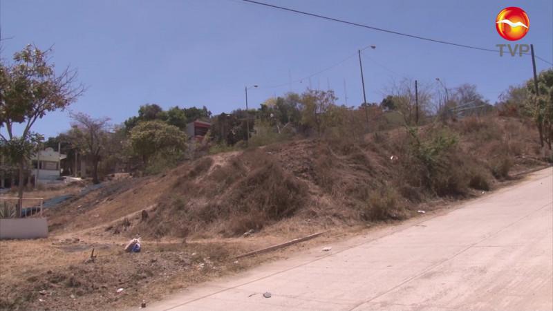 Piden inventario actualizado de áreas verdes en Mazatlán