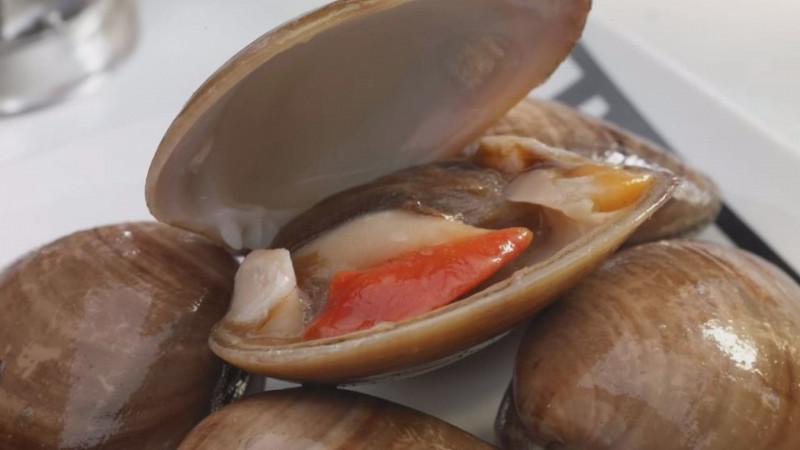 Libre de veda sanitaria Sinaloa  para moluscos bivalvos y caracoles