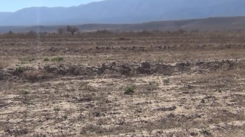 Pudiera ser la sequía mas severa en los últimos 60 años en Sinaloa