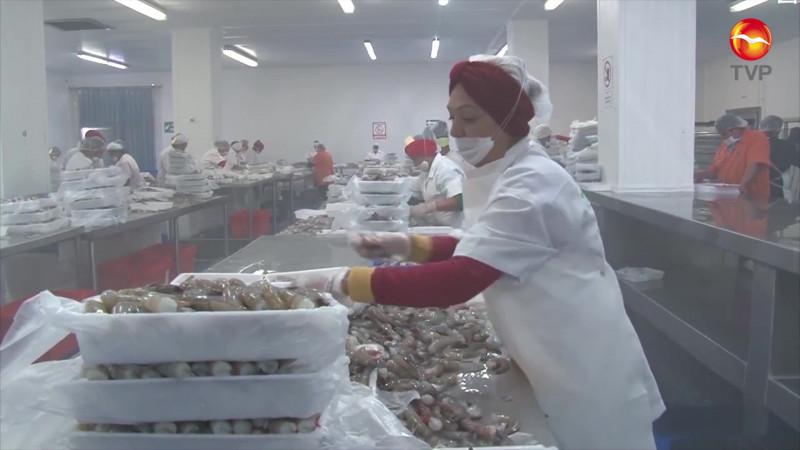Buscan reactivar exportaciones de camarón de altamar