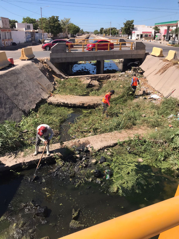 La dirección de obras públicas del Ayuntamiento de Culiacán mantiene la limpieza de arroyos