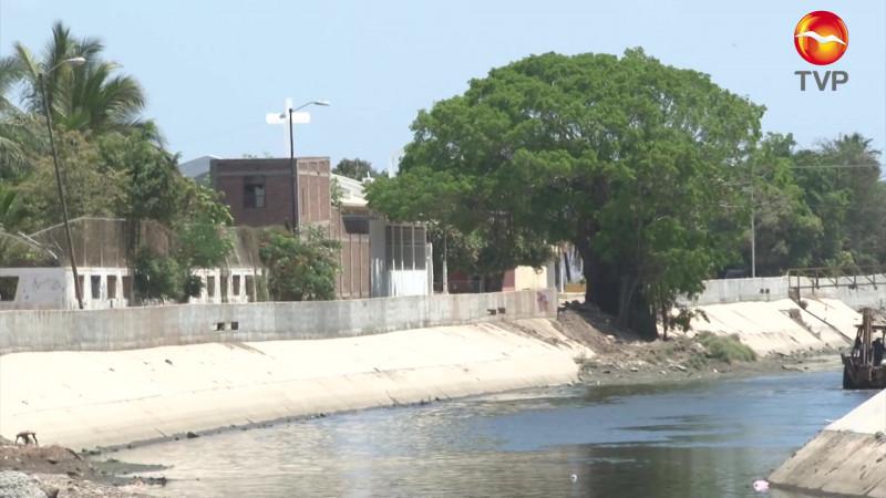 A favor de que se quede árbol en Jacarandas, Ecología Municipal