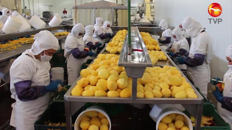 Persiste afectación por pandemia en exportaciones