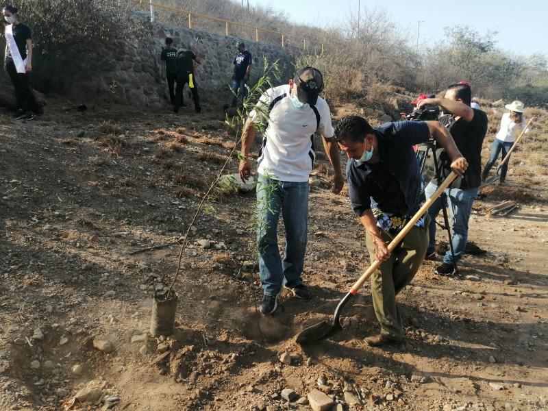 Autoridades reforestan la falda del Cerro de la Memoria en Ahome