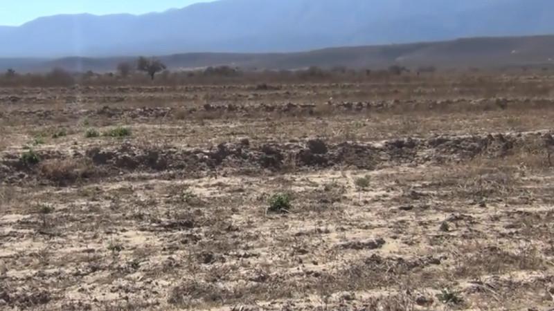 En Sinaloa comenzará la inyección de nubes para que llueva