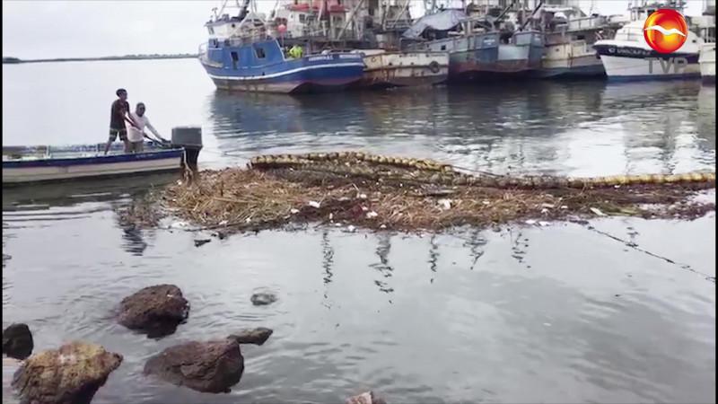 Retiran seis toneladas de basura de la biobarda en Mazatlán