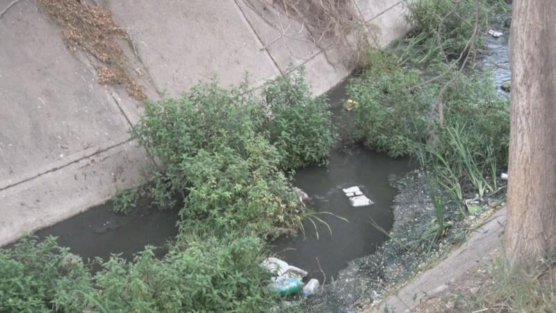Fétidos olores por aguas negras en canal en la Amado Nervo
