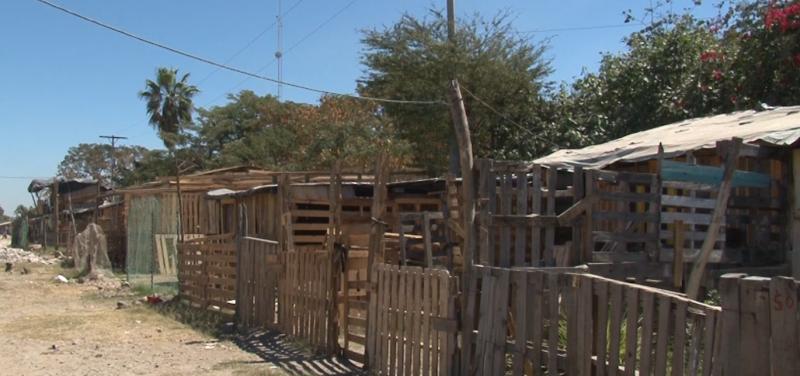 Solicitan alumbrado público en la invasión San Antonio de Mazatlán