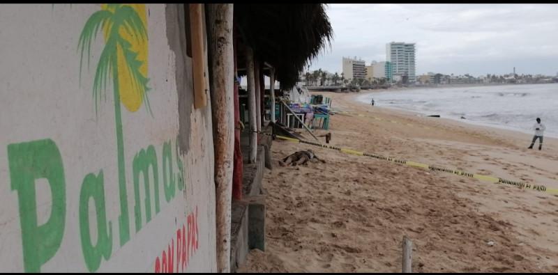 Encuentran a hombre muerto en playas de Mazatlán