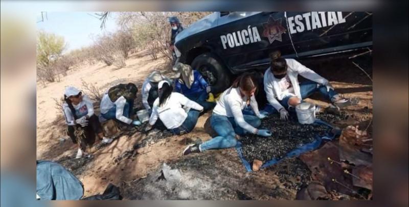 Un duro golpe a colectivos de búsqueda de desaparecidos en Sonora, asesinato de Gladys Aranza