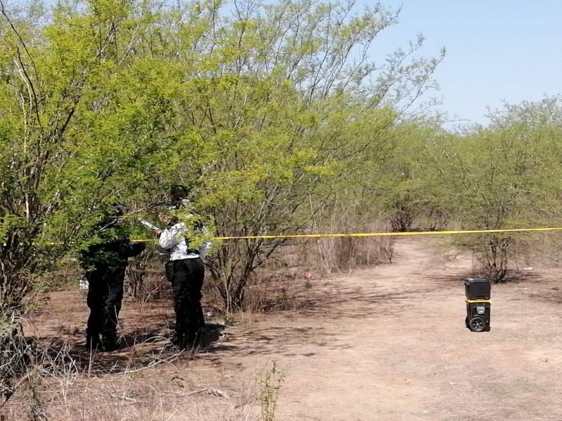 Encuentras dos cuerpos al sur de Culiacán