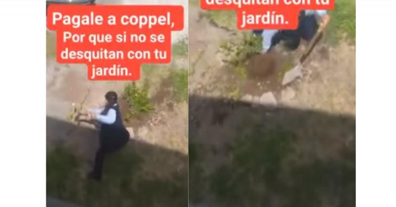 Le apodan #LadyCoppel por destruir un arbolito: dicen que fue a cobrar y no le quisieron abonar (video viral)