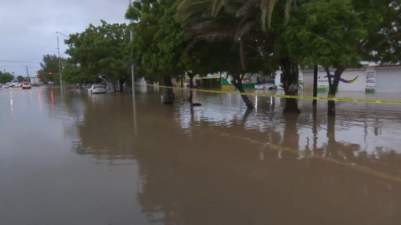 Trabaja Japama en el desazolve de pluviales en Los Mochis