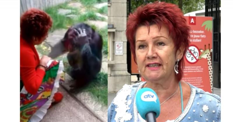 Prohíben entrada a mujer a zoológico por tener un romance con un chimpancé