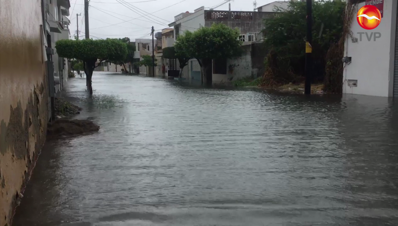 Lluvias dejan 100 árboles caídos y 32 semáforos descompuestos en Mazatlán